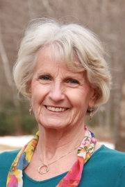 Carol Lillieqvist Welsh