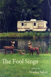The Fool Sings by Maine writer Weslea Sidon