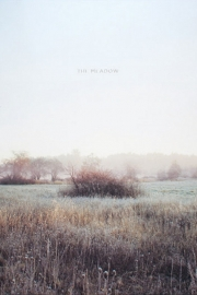 The Meadow by Maine writer Margot Anne Kelley