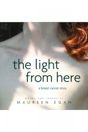 The Light From Here by Maine writer Maureen Egan
